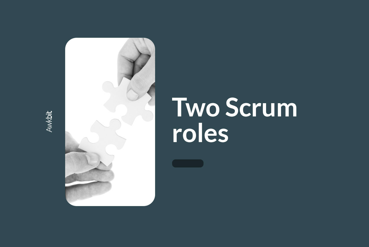 Two-Scrum-roles