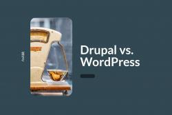 Drupal vs. WordPress